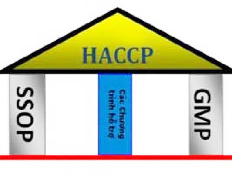 HACCP là gì ? - Đảm bảo an toàn thực phẩm cùng tiêu chuẩn quốc tế và mối liên hệ với GMP và SSOP