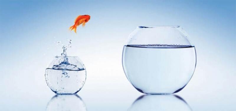 Thay đổi giấy phép kinh doanh khi công ty có những thay đổi nhất định